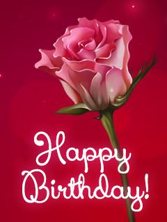 Happy Birthday.rose